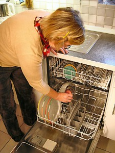 grant-dishwasher-335667_1280